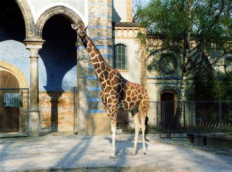 Zoologischer Garten Shisha Bar by Heoologischerartenerlinerlinooisthemostvisitedzooinuropean