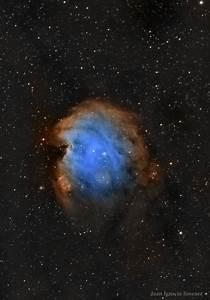 6 February 2017 | The Monkey Head Nebula – European ...
