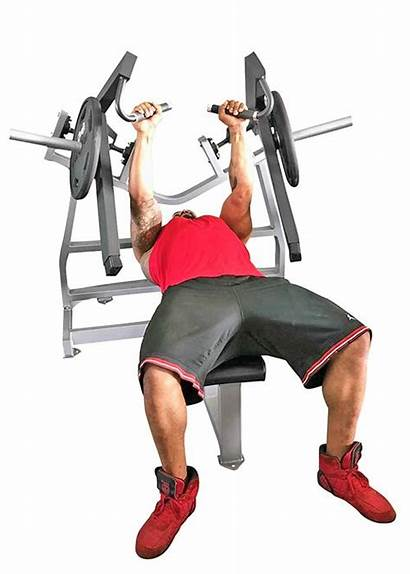 Bench Press Horizontal Muscle Leverage Mdp 1038