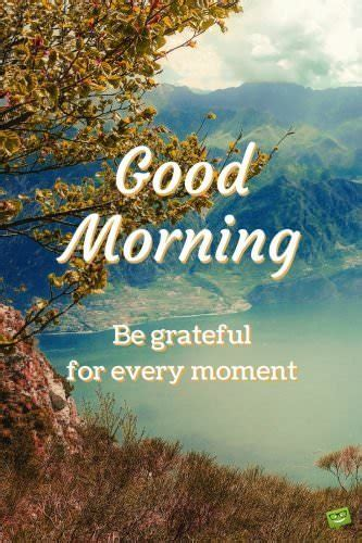 latest good morning images wallpaper photo pics hd