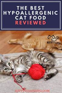 hypoallergenic cat treats best hypoallergenic cat food for cats with allergies