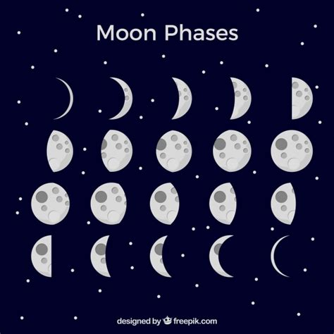 Moon Phases Background Blue Background With Moon Phases Vector Free