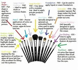 Diagram About Make Up Brushes  What They Are Called And