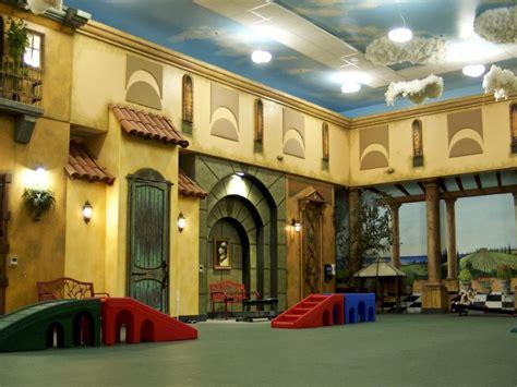 incredible indoor dog parks hgtv