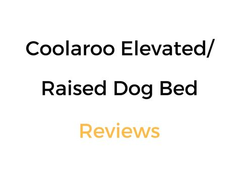 Coolaroo Elevated Pet Bed by Coolaroo Elevated Raised Bed Review Buyer S Guide