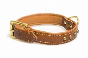 Hundehalsband Mit Namen Leder : hundehalsband leder mit namen g nstig online kaufen ~ Yasmunasinghe.com Haus und Dekorationen