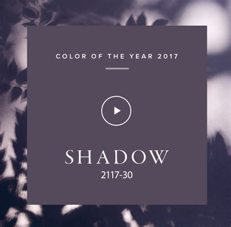benjamin s 2017 paint color forecast provident