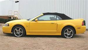 Screaming Yellow 2004 Ford Mustang Svt Cobra Convertible