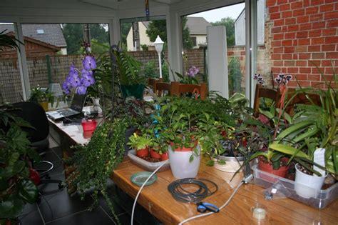 arrosage automatique plante interieur arrosage automatique special vacances pour plantes d interieur