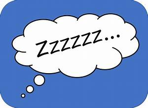 Lousy Night Sleep Zzzzzz Lice Spies Lice Spies