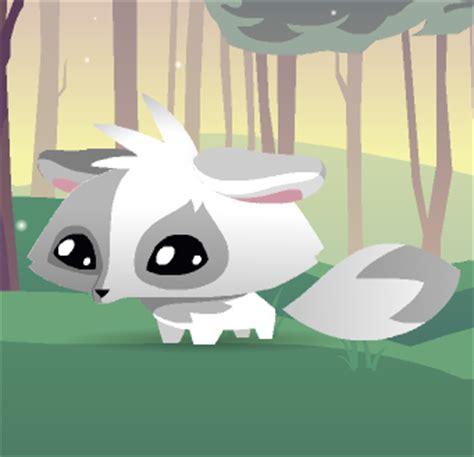 pet arctic fox animal jam wiki fandom powered  wikia