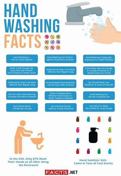 Facts Washing Hand Handwashing Hygiene Important Infographics