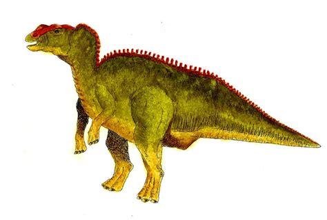 hadrosaurus pictures facts dinosaur