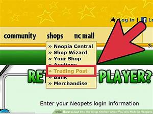 How to Get Into the Soup Kitchen when You Are Rich on Neopets