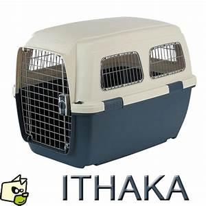 Cage Transport Chien Voiture : transporter son chien en cage est obligatoire en avion en voiture et dans les transports en commun ~ Medecine-chirurgie-esthetiques.com Avis de Voitures