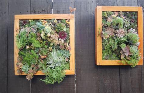 Vertical Garden Maintenance by Ewa In The Garden Low Maintenance Succulent Vertical Garden
