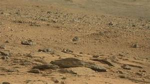Did Curiosity find a rat on Mars?
