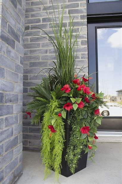 Plants Container Artificial Garden Plant Cafe Cheap