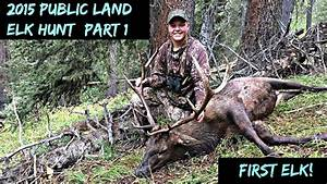 2015 Colorado Public Land OTC Elk Hunt (part 1) | Doovi
