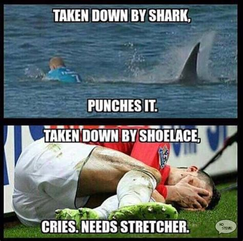 Shark Attack Meme - mick fanning shark attack memes