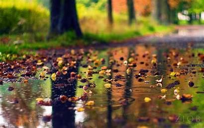 Rainy Season Phone Android Wallpapers Level Rain
