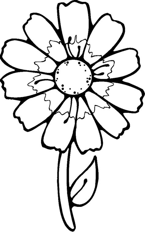 Flower Color Sheet by Flower Coloring Printables For