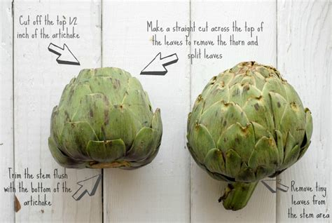 how to cook an artichoke how to cook artichokes and tarragon chive dipping sauce
