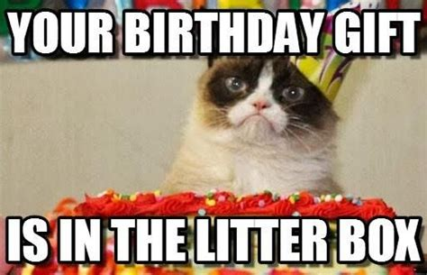 Birthday Grumpy Cat Meme - slapcaption com caption funny photos and meme gallery the best of slapcaption com