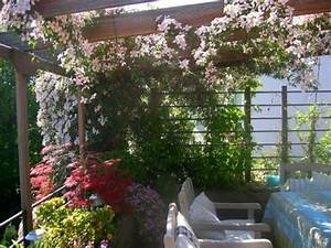 gestaltungsideen fur balkon und dachterrasse mein With französischer balkon mit japanischer ahorn garten