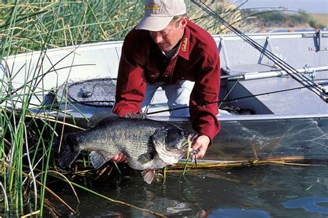 Game & Fish 2016 Bass Forecast  Game & Fish