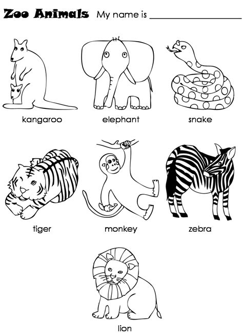 worksheets  zoo animals zoo worksheet