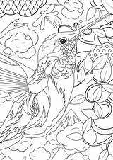 Coloring Animal Complex Complicated sketch template