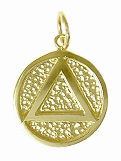 Medallion Gold 14k Pendant Symbol Aa My12stepstore