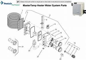 Pentair Mastertemp Heater Water System Parts