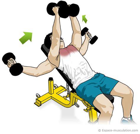 Exercice Abdo Banc Incliné by Pectoreaux Ecart 233 233 Inclin 233