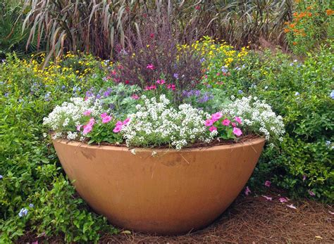 large outdoor planters for sale large planter pots for sale amazing large plant pots large plant pots suppliers and at