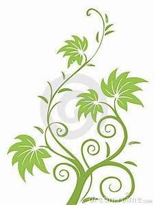 71 best leaves and vines images on Pinterest Backgrounds