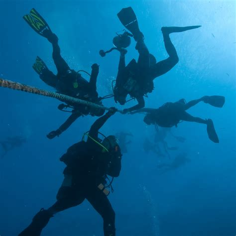 islamorada dive center scuba diving   florida keys