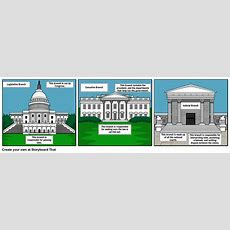 Three Branches Of Government Storyboard Storyboard