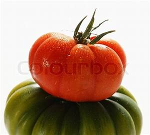 Red and green tomato | Stock Photo | Colourbox