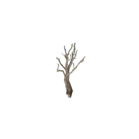 Escabeau Branche Bois Décorative Et Vente De Branche Décorative Bois Flotté 90 Cm