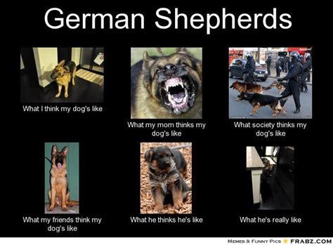 Funny German Memes - german meme www imgkid com the image kid has it