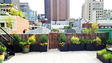 manhattan roof garden paver deck terrace bamboo fence container plants fibe contemporary