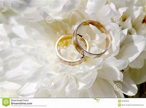 wedding rings with flowers stock photo image of feminine