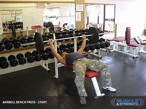 Barbell Bench Press Video Exercise Guide  U0026 Tips