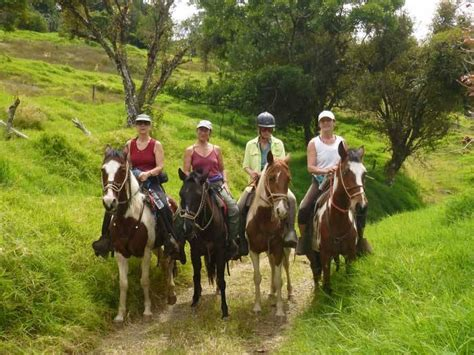 riding costa rica horse horseback tours horses away