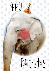 Birthday Love Card Cute Elephant Free Birthday Card Greetings Island