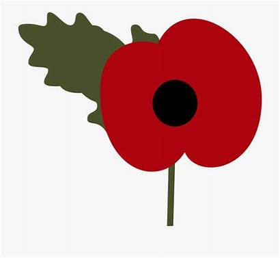 Poppy Drawing Remembrance Clipart Clip Poppies Cartoon