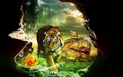 Tiger Tigers 3d Wallpapers Fanpop Abstract Background