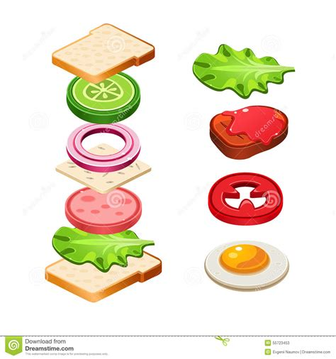 illustration cuisine sandwich ingredients food illustration royalty free